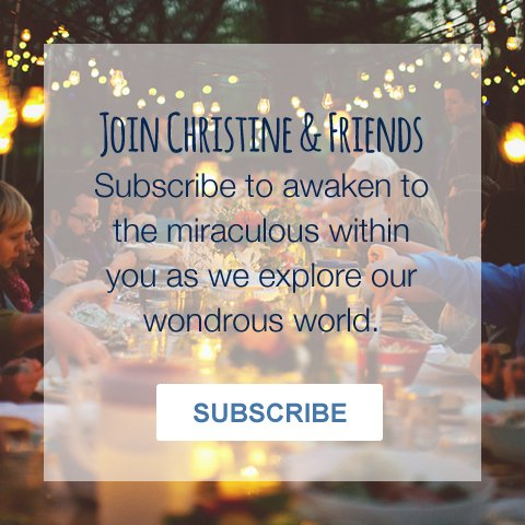 Subscribe to Christine Horner